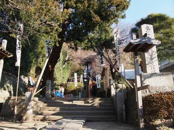 1.杉本寺 (1).JPG