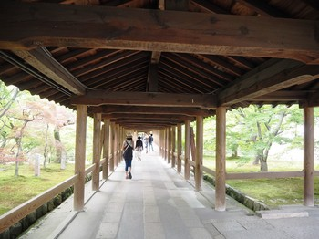 京都 (19).JPG