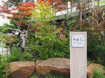京都 (3).JPG