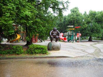 京都府立植物園 (2).JPG