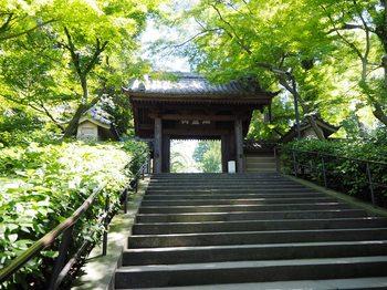円覚寺 (2).JPG