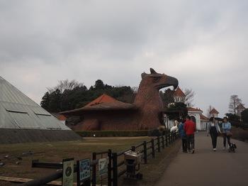 シャボテン公園 (22).JPG