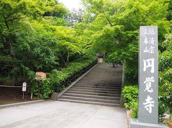 香下庵茶屋 (1).JPG